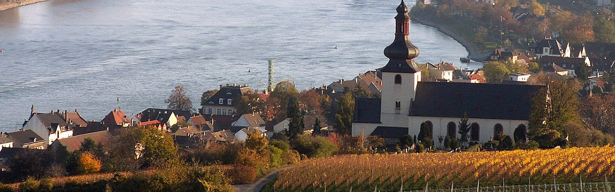 Rheinhessen: giovani produttori crescono