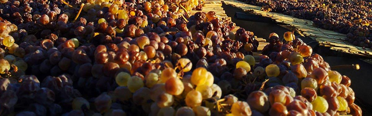 Florio: vini dolci siciliani dal 1833