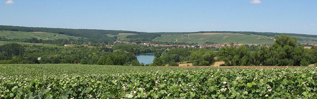 Valle della Marne