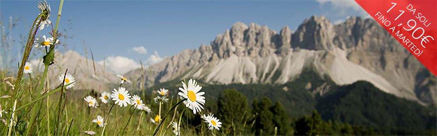 Veltliner: freschezza alpina