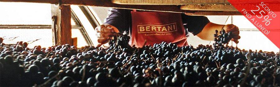Bertani: grandi vini di Valpolicella