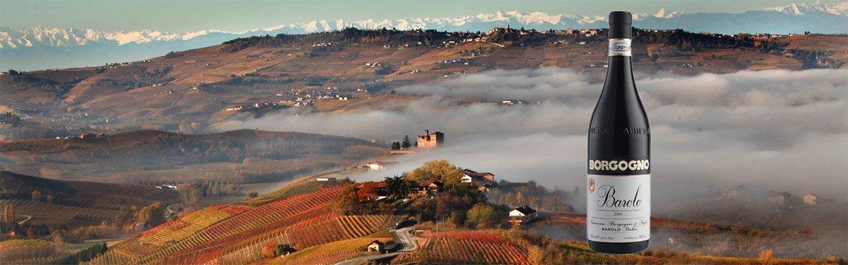 Cantina Borgogno: Barolo e vini piemontesi dal 1861