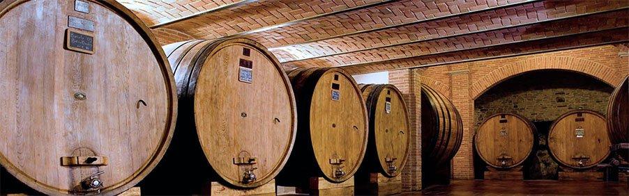 Cavallotto: vini nati e cresciuti a Bricco Boschis