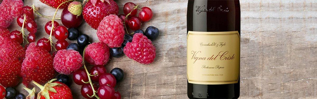 Cavicchioli: vini Lambrusco famosi nel mondo