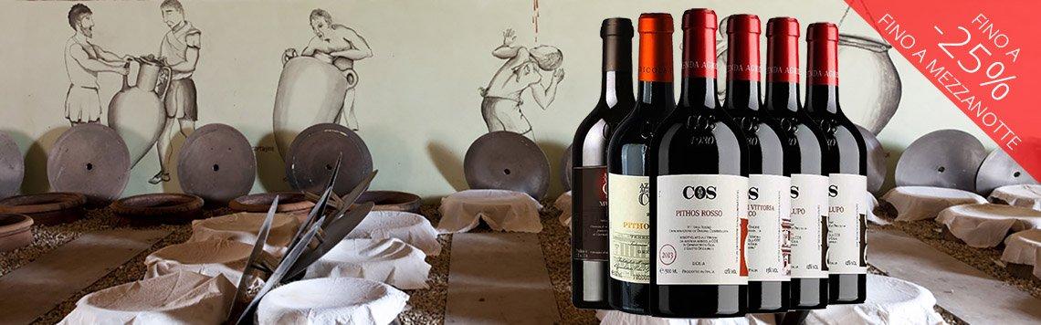 Azienda agricola COS: vini naturali