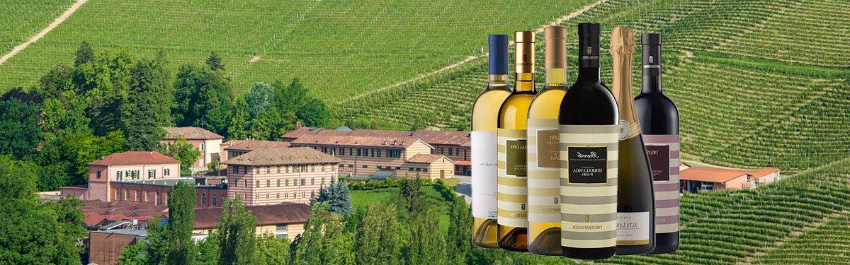 Cantina Fontanafredda: vini pregiati delle langhe
