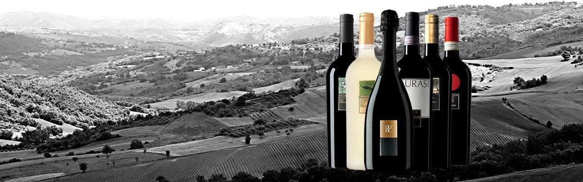 Feudi San Gregorio: grandi vini campani