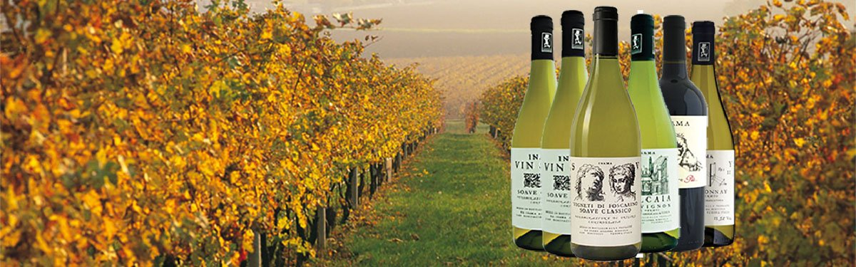 Cantina vinicola Inama: vini non convenzionali
