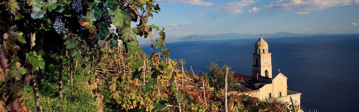 Cantine Marisa Cuomo: vini della Costiera Amalfitana