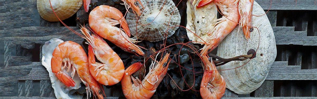 Pesce: crostacei e molluschi