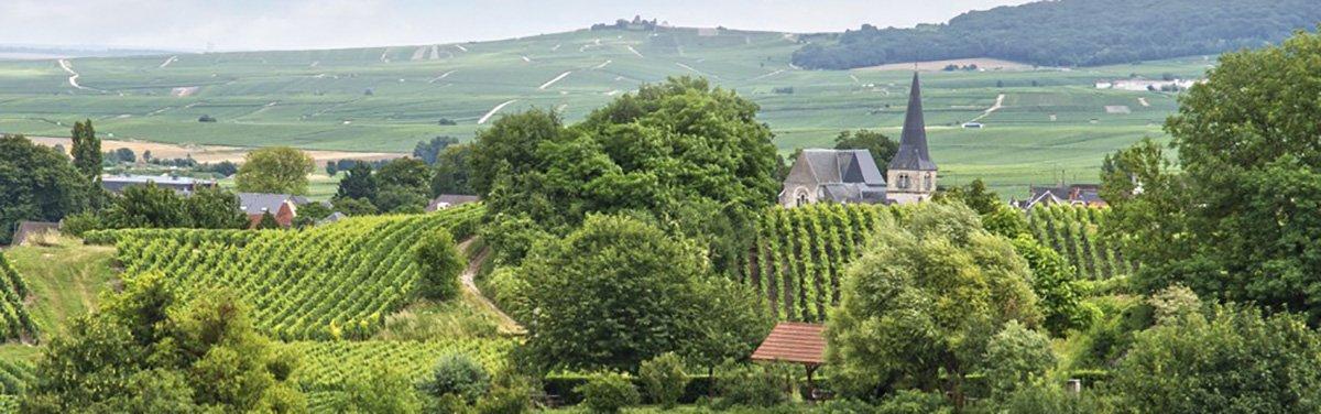 Montagna di Reims