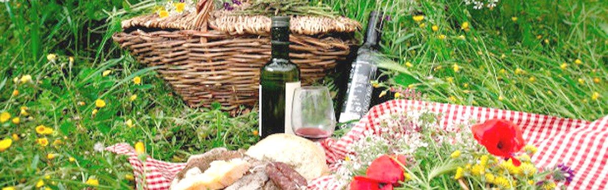 20 vini perfetti per il pic nic