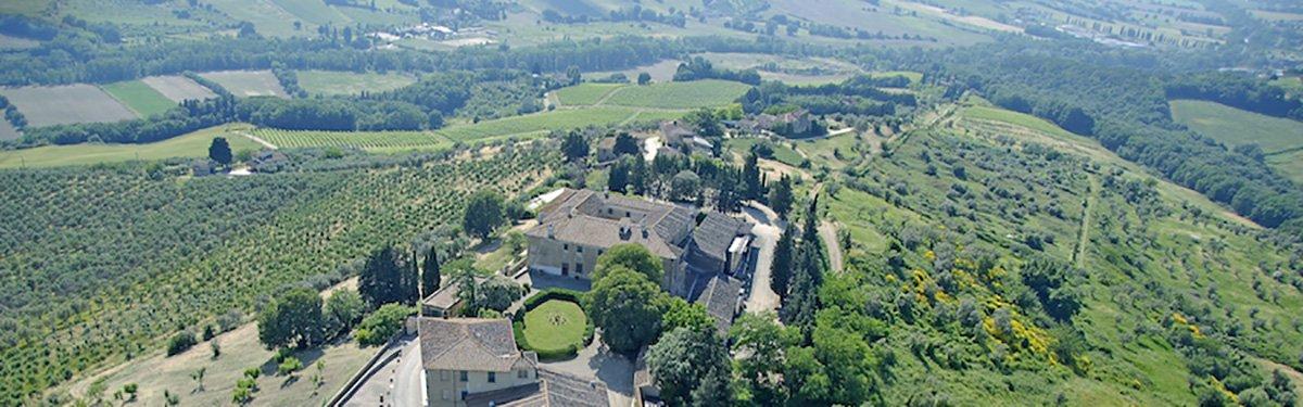 Villa Montepaldi: 100% Chianti Classico