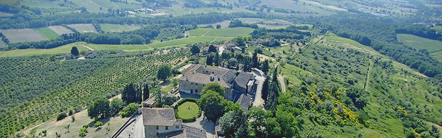 Villa Montepaldi: i vini di Lorenzo il Magnifico