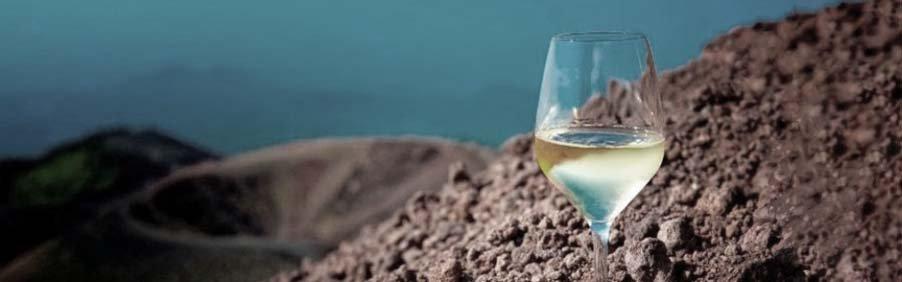 Vini bianchi minerali