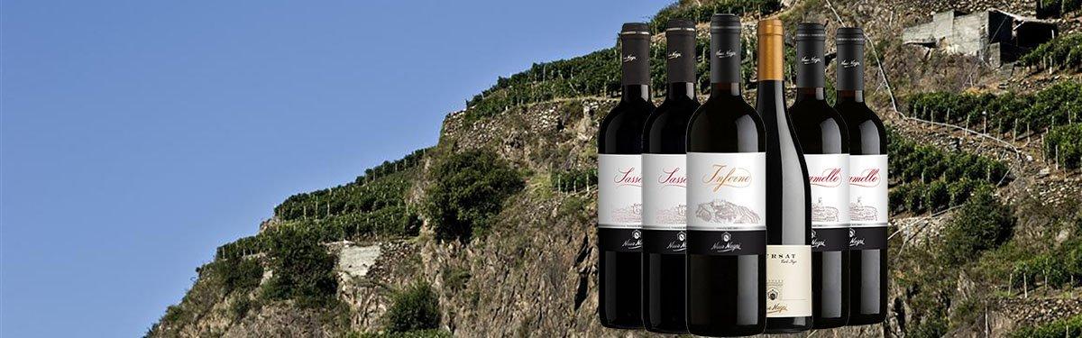 Nino Negri: vini eroici dall'Inferno