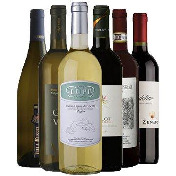 Selezione vini rossi e bianchi da bere freschi