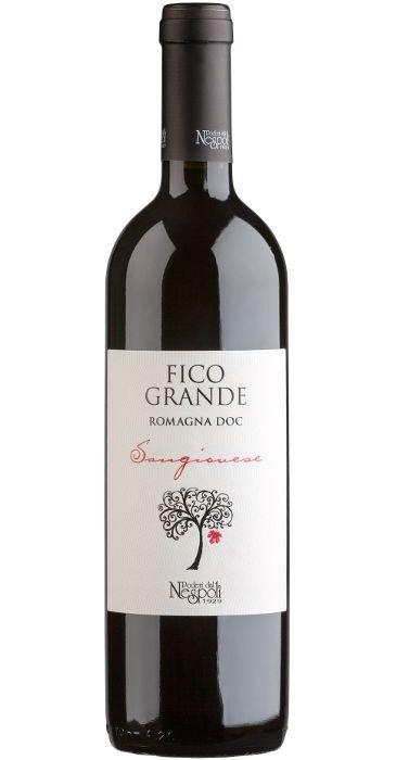 Poderi dal Nespoli Fico grande 2013 Romagna DOC