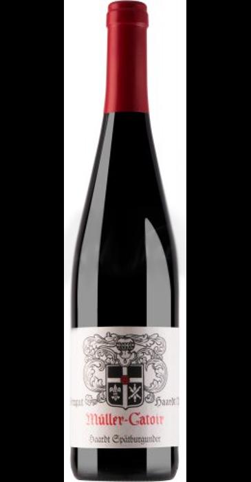 Müller-Catoir Spätburgunder trocken 2011 Deutscher Qualitätswein