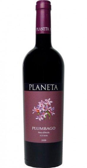 Planeta Plumbago 2012