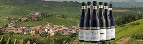 Acquista on line i vini di Borgogno