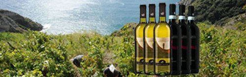 Acquista on line i vini di Cenatiempo
