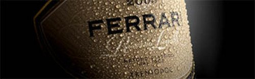 Acquista on line i vini di Ferrari