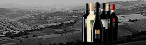 Acquista on line i vini di Feudi di San Gregorio
