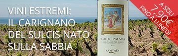 Acquista on line il vino estremo Baie di Palmas