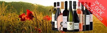 Acquista online i migliori vini a prezzo speciale