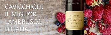 Compra online i vini di Cavicchioli