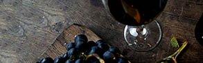 Acquista online i migliori vini Amarone a prezzo speciale