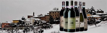 Acquista on line i vini di Castello di Neive