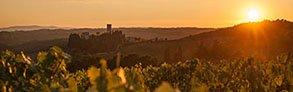 Acquista online i migliori vini Supertuscan  a prezzo speciale
