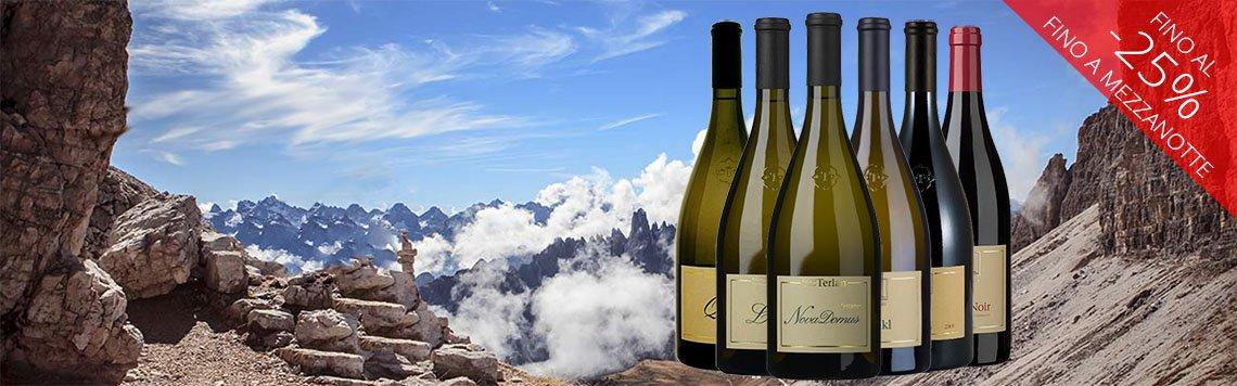 Acquista online i vini di Terlano a prezzo speciale